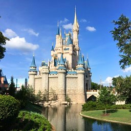 Magic Kingdom News