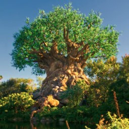 Animal Kingdom News